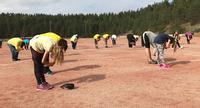 Yhteistyötä liikkuen – UUMU ja Syke ulkoilivat Nummelassa.